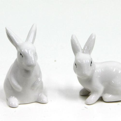 Miniature Rabbits - Major and Minor hire - Wanaka Party Hire