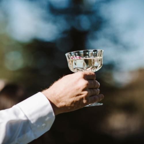 Crystal Goblet _ Example _ Wanaka Wedding Hire _ Queenstown Wedding Hire _ Major and Minor